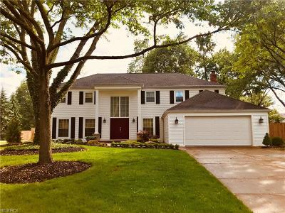 Strongsville Single Family Home For Sale: 17819 Fox Hollow Dr