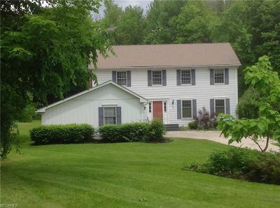 Chagrin Falls Single Family Home For Sale: 8952 Old Meadow Dr