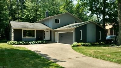 North Olmsted Single Family Home For Sale: 28661 Jenkins Rd