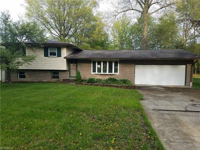 Single Family Home For Sale: 415 Hillsdale St
