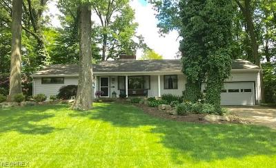 Canfield Single Family Home For Sale: 311 North Hillside Rd