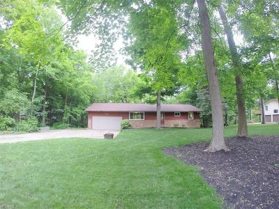 Mentor Single Family Home For Sale: 8803 Grace Ct