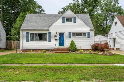 Avon Lake Single Family Home For Sale: 258 Brookfield Rd