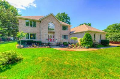 Willoughby Hills Single Family Home For Sale: 2990 Som Center Rd