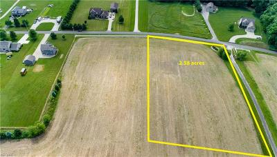 Residential Lots & Land For Sale: Immel St Northeast