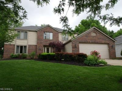Strongsville Single Family Home For Sale: 18113 Williamsburg Oval