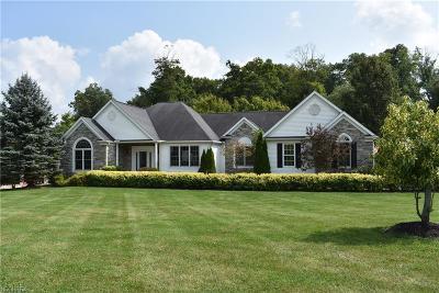 Aurora Single Family Home For Sale: 350 Regal Oaks Cir