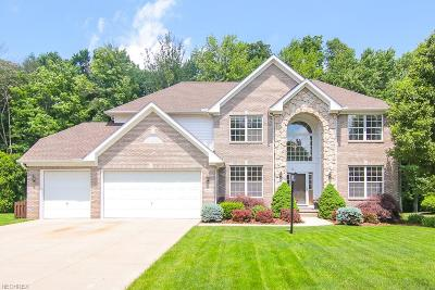 Twinsburg Single Family Home For Sale: 2809 Overlook Dr