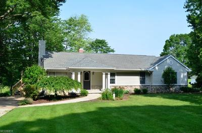 Copley Single Family Home For Sale: 700 South Hametown Rd