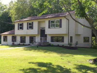 Kent Single Family Home For Sale: 3837 Martha Rd