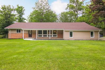 North Royalton Single Family Home For Sale: 8161 State Rd