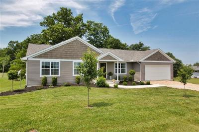 Zanesville Single Family Home For Sale: 4655 Boggs Rd
