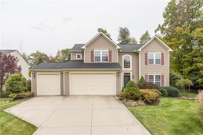 Twinsburg Single Family Home For Sale: 9254 Ashcroft Ln
