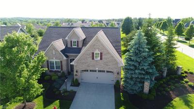 Medina Single Family Home For Sale: 6018 Mint Hill Dr