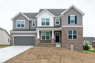 Twinsburg Single Family Home For Sale: 10194 Corbetts Ln