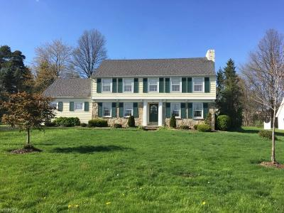 Aurora Single Family Home For Sale: 141 East Garfield Rd