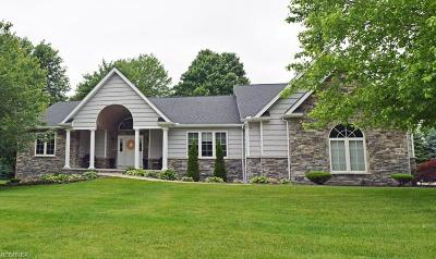 Concord Single Family Home For Sale: 6736 Auburn Rd