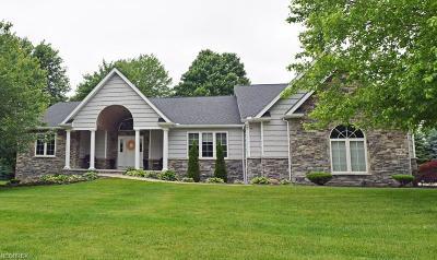 Lake County Single Family Home For Sale: 6736 Auburn Rd