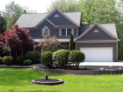 Geauga County Single Family Home For Sale: 15280 Rock Creek Rd
