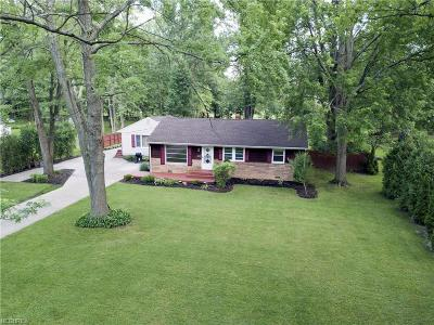 Mentor Single Family Home For Sale: 8164 Edgewood Rd