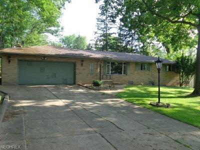 North Royalton Single Family Home For Sale: 7397 James Dr
