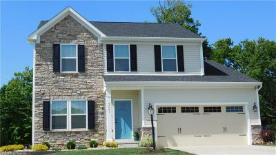 Medina Single Family Home For Sale: 5501 Wightman Cir