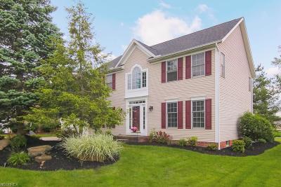 Twinsburg Single Family Home For Sale: 10230 Pratt Ln