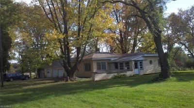 Lorain County Single Family Home For Sale: 44037 West Rd