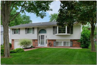 North Olmsted Single Family Home For Sale: 6305 Christman Dr