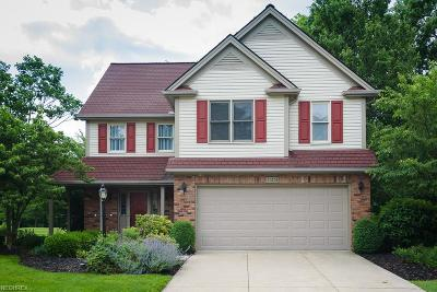 Twinsburg Single Family Home For Sale: 11253 Stanley Ln