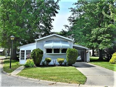Olmsted Township Single Family Home For Sale: 20 Elgin Oval