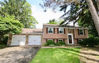 Painesville Township Single Family Home For Sale: 1589 Westchester Ct