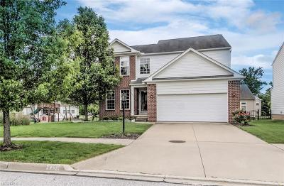 Broadview Heights Single Family Home For Sale: 2375 Nettleton Ln