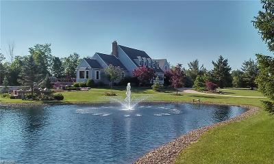 Medina Single Family Home For Sale: 2214 Substation Rd