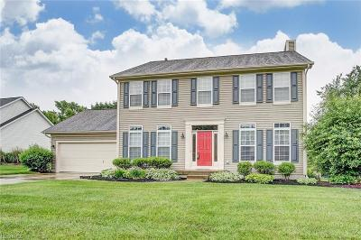 Licking County Single Family Home For Sale: 1843 Willow Ridge Dr