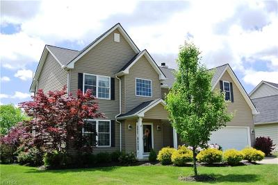 Olmsted Township Single Family Home For Sale: 27309 Watkin Rd