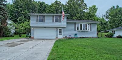 Twinsburg Single Family Home For Sale: 10128 Belmeadow Dr