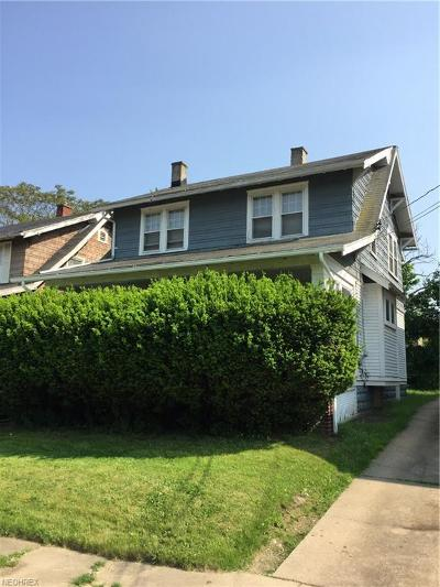 Youngstown Single Family Home For Sale: 59 East Avondale Ave