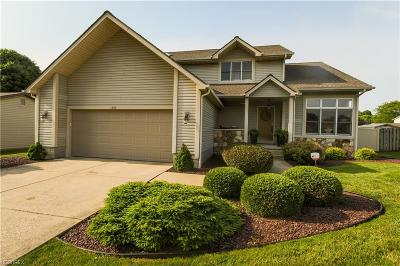 Youngstown Single Family Home For Sale: 1339 Pheasant Ct