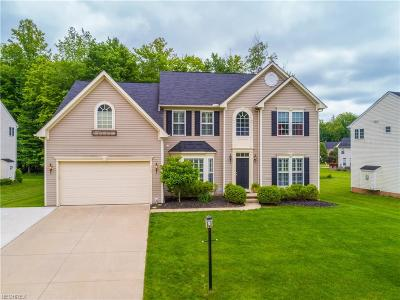 Broadview Heights Single Family Home For Sale: 4787 Westminster Ln