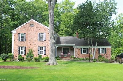 Aurora Single Family Home For Sale: 565 Oak Hollow Rd