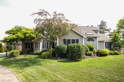 Rocky River Single Family Home For Sale: 5 Erin Ct