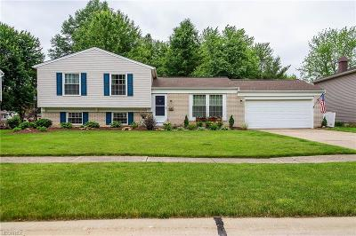 Olmsted Township Single Family Home For Sale: 26919 Oxford Park Ln