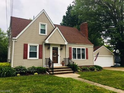 Geneva Single Family Home For Sale: 90 Cummings Ave