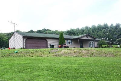 Single Family Home For Sale: 41315 State Route 39