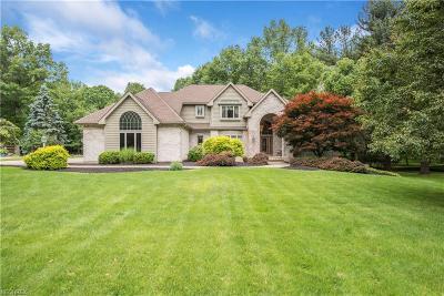 Boardman Single Family Home For Sale: 7496 West Parkside Dr