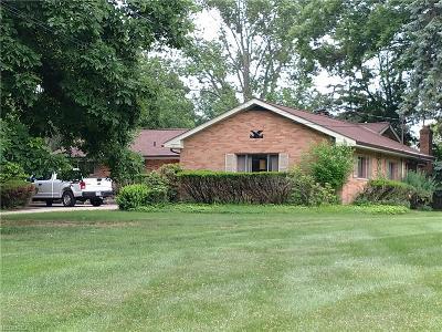 Brecksville Single Family Home For Sale: 7544 Amber Ln