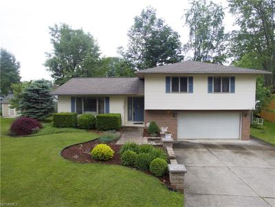 Chippewa Lake Single Family Home For Sale: 104 Beau Bay Blvd