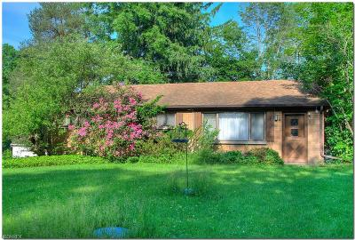 Chesterland Single Family Home For Sale: 12902 Heath Rd