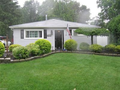 Mentor Single Family Home For Sale: 4837 Willowbrook Dr